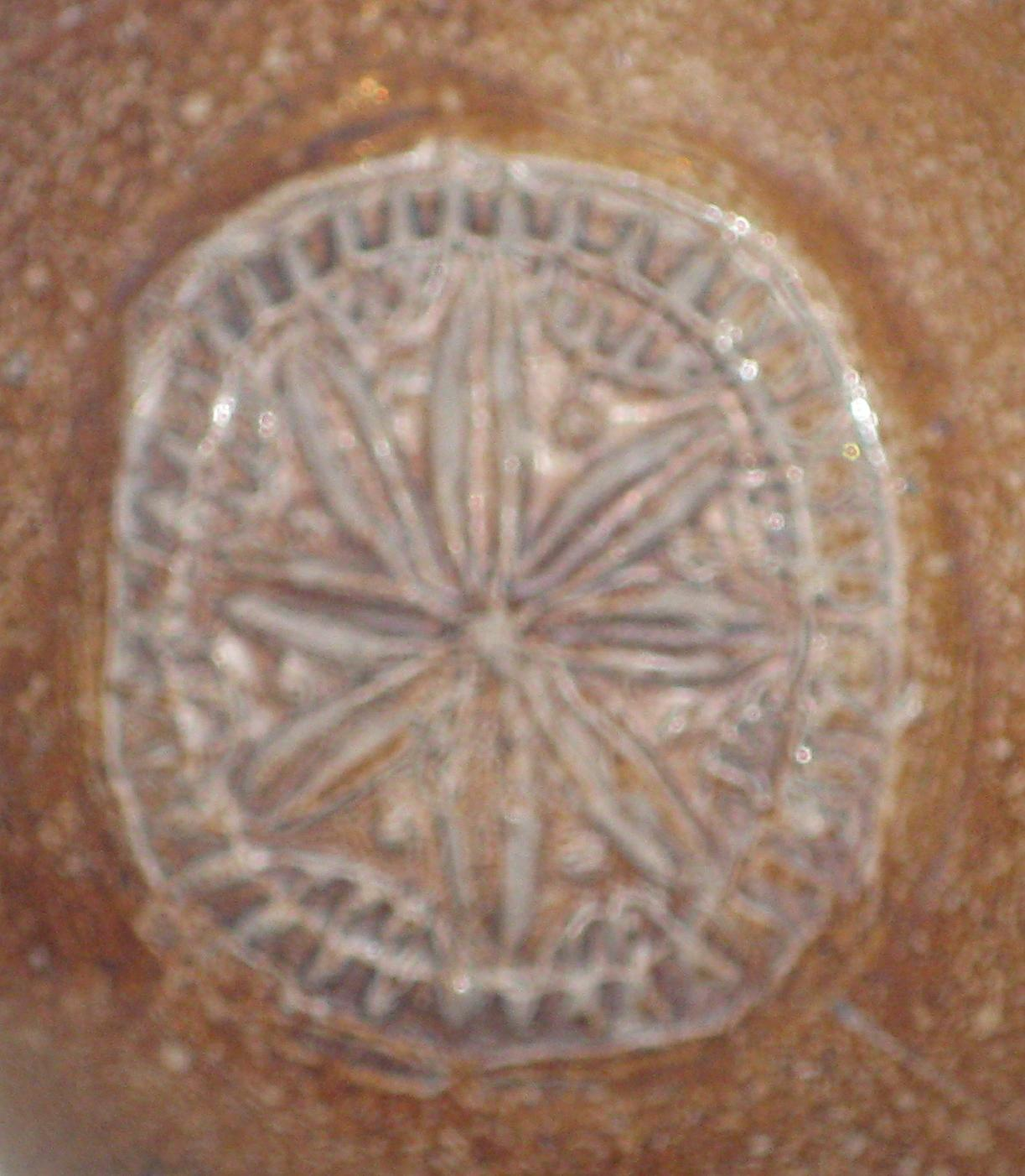 Close up photo of a floral design in a circle on a piece of roman pottery. the design is raised up from the side of the pot, rather than cut into it